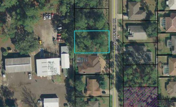 45 Woodfield Drive, Palm Coast, FL 32164 (MLS #245637) :: RE/MAX Select Professionals