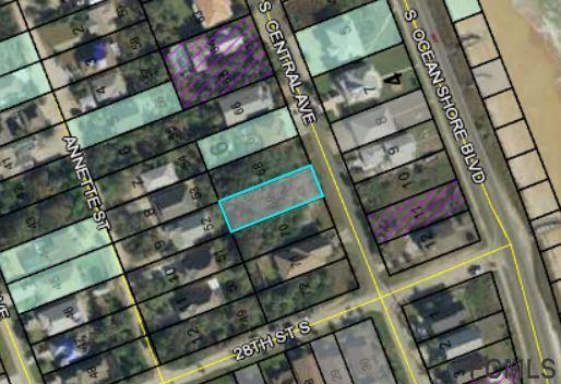 27XX S Central Ave S, Flagler Beach, FL 32136 (MLS #246031) :: Memory Hopkins Real Estate