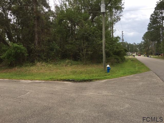 2 Karl Court, Palm Coast, FL 32164 (MLS #246558) :: Memory Hopkins Real Estate