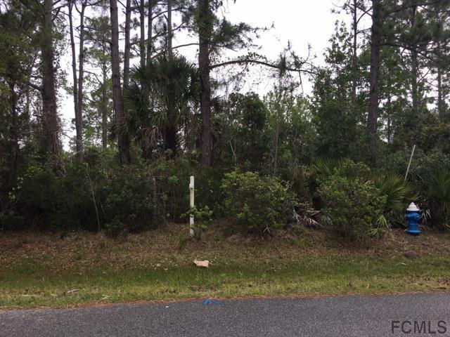13 Pine Crest Ln, Palm Coast, FL 32164 (MLS #246561) :: Memory Hopkins Real Estate