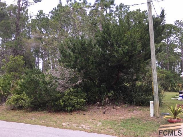 120 Secretary Trail, Palm Coast, FL 32164 (MLS #246564) :: Memory Hopkins Real Estate