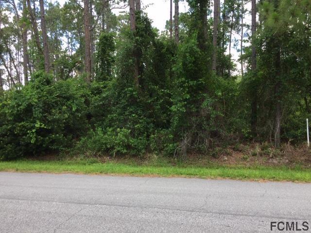 18 Regent Lane, Palm Coast, FL 32164 (MLS #248321) :: RE/MAX Select Professionals