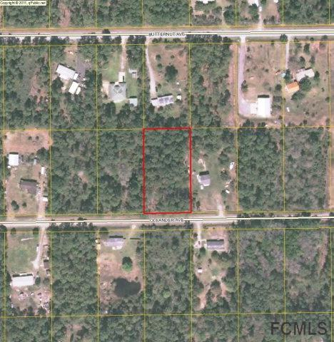 4132 Oleander Avenue, Bunnell, FL 32110 (MLS #248432) :: Memory Hopkins Real Estate