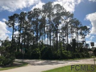 2 Eagle Crest Path, Palm Coast, FL 32164 (MLS #249077) :: Memory Hopkins Real Estate