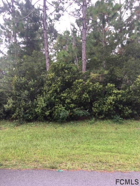44 Burroughs Drive, Palm Coast, FL 32137 (MLS #251362) :: Memory Hopkins Real Estate