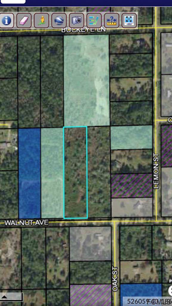 5750 Walnut Avenue, Bunnell, FL 32110 (MLS #251903) :: Memory Hopkins Real Estate