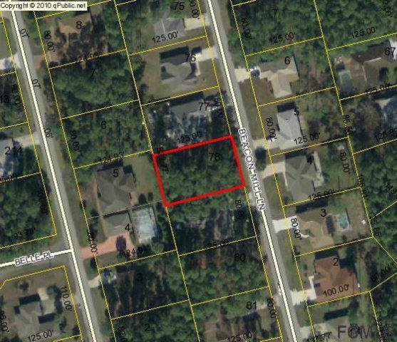 17 Beacon Mill Ln, Palm Coast, FL 32137 (MLS #253443) :: Noah Bailey Group