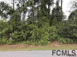 7 Royal Leaf Ln, Palm Coast, FL 32164 (MLS #254290) :: RE/MAX Select Professionals