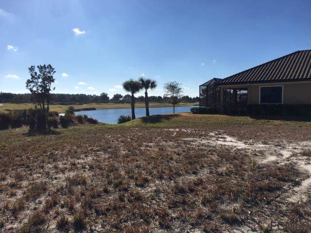 439 Bourganville Drive, Palm Coast, FL 32137 (MLS #254574) :: Memory Hopkins Real Estate