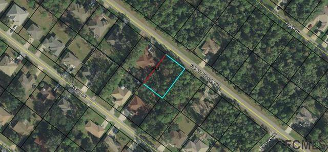 48 Ponce Deleon Dr, Palm Coast, FL 32137 (MLS #255203) :: Noah Bailey Group