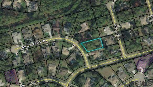 4 Willoughby Pl, Palm Coast, FL 32164 (MLS #256257) :: Keller Williams Realty Atlantic Partners St. Augustine