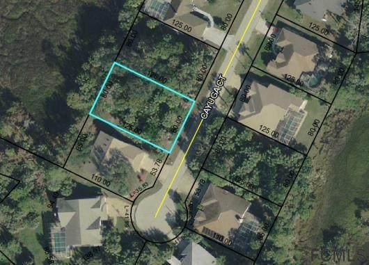 8 Cayuga Court, Palm Coast, FL 32137 (MLS #257625) :: Memory Hopkins Real Estate