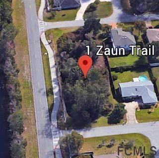 1 Zaun Trail, Palm Coast, FL 32164 (MLS #258371) :: Memory Hopkins Real Estate