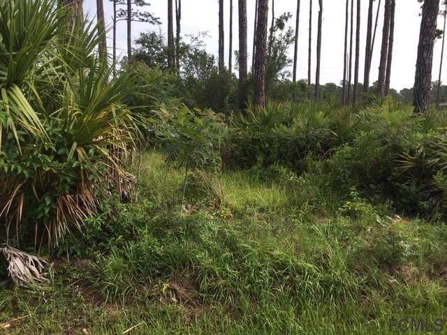 40 Esperanto Drive, Palm Coast, FL 32164 (MLS #258378) :: Memory Hopkins Real Estate