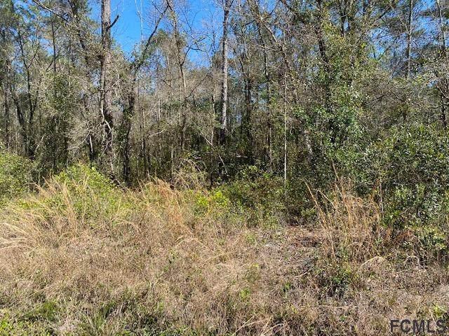 10515 Gregory Avenue, Hastings, FL 32145 (MLS #258616) :: Memory Hopkins Real Estate