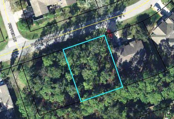 20 Peppercorn Lane, Palm Coast, FL 32164 (MLS #260321) :: Keller Williams Realty Atlantic Partners St. Augustine