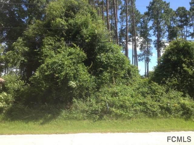 147 Eric Drive, Palm Coast, FL 32164 (MLS #260414) :: RE/MAX Select Professionals