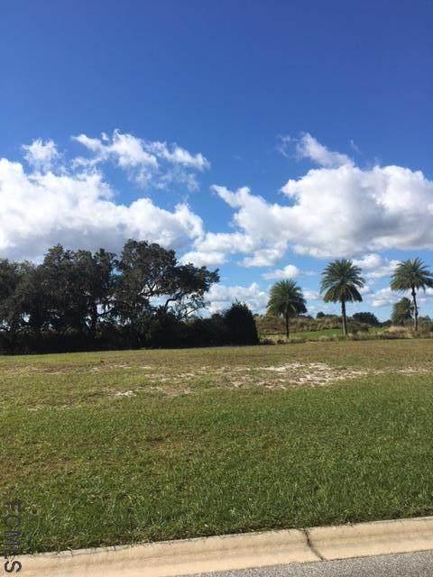 484 Sweetgum Lane, Palm Coast, FL 32137 (MLS #262913) :: The DJ & Lindsey Team