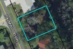 10 Palmwood Drive, Palm Coast, FL 32164 (MLS #263834) :: Dalton Wade Real Estate Group