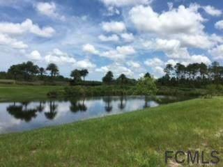 337 E Hibiscus Way, Palm Coast, FL 32137 (MLS #264856) :: RE/MAX Select Professionals