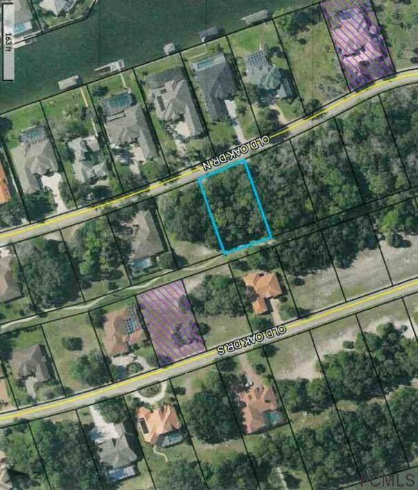 19 N Old Oak Dr, Palm Coast, FL 32137 (MLS #265008) :: The DJ & Lindsey Team