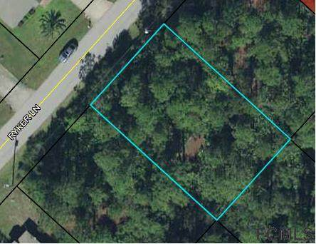 12 Ryker Lane, Palm Coast, FL 32164 (MLS #265273) :: Noah Bailey Group