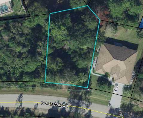 141 Pritchard Dr, Palm Coast, FL 32164 (MLS #265274) :: Noah Bailey Group