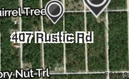 407 Rustic Rd, Satsuma, FL 32189 (MLS #265459) :: Dalton Wade Real Estate Group