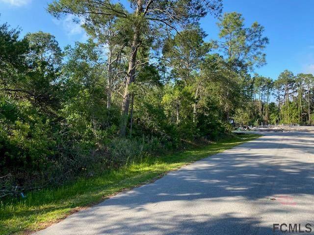 35 Fairchild Lane, Palm Coast, FL 32137 (MLS #267357) :: Memory Hopkins Real Estate