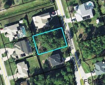 25 Burnham Lane, Palm Coast, FL 32137 (MLS #267405) :: Olde Florida Realty Group