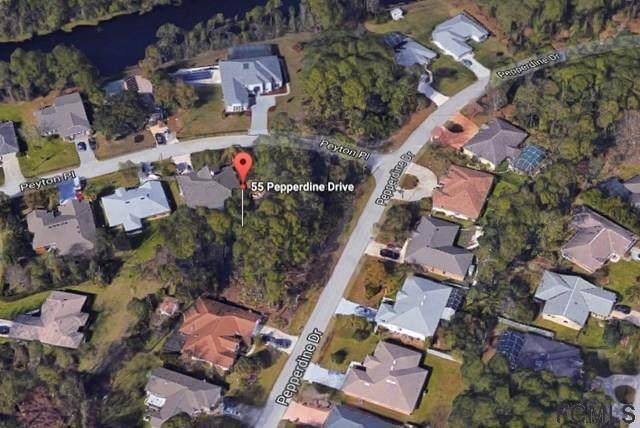 55 Pepperdine Drive, Palm Coast, FL 32164 (MLS #267548) :: Olde Florida Realty Group