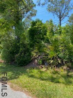 13 Radium Lane, Palm Coast, FL 32164 (MLS #267971) :: NextHome At The Beach II