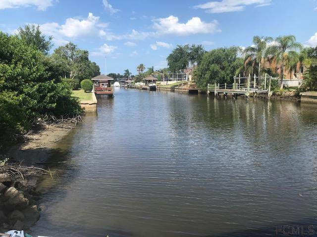 6 Cedarfield Ct, Palm Coast, FL 32137 (MLS #268510) :: NextHome At The Beach II