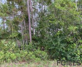 48 Raemoor Drive, Palm Coast, FL 32164 (MLS #268554) :: Keller Williams Realty Atlantic Partners St. Augustine