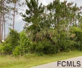 160 Rae Drive, Palm Coast, FL 32164 (MLS #268563) :: Noah Bailey Group