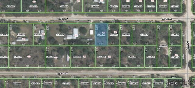 219 Flagler Drive, Interlachen, FL 32148 (MLS #268625) :: Noah Bailey Group