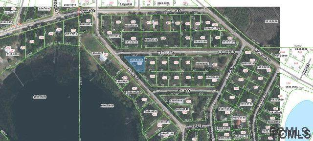 144 Mullis Ave, Interlachen, FL 32148 (MLS #268629) :: Noah Bailey Group