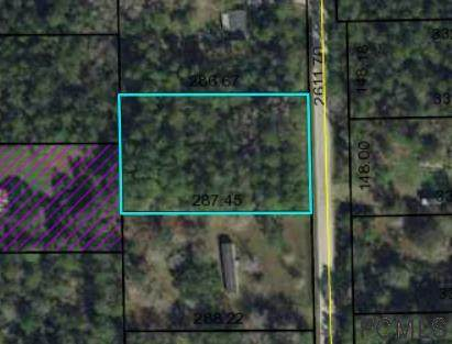 1340 Hickory St, Bunnell, FL 32110 (MLS #268813) :: NextHome At The Beach II