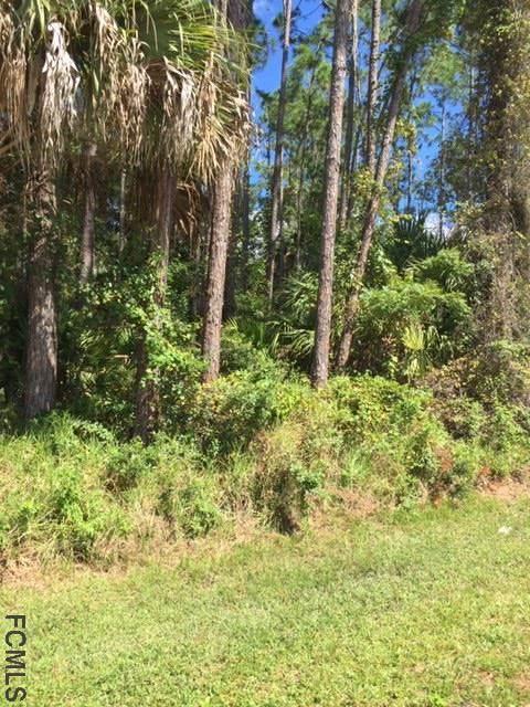 9 Poinfield Pl, Palm Coast, FL 32164 (MLS #271369) :: NextHome At The Beach II
