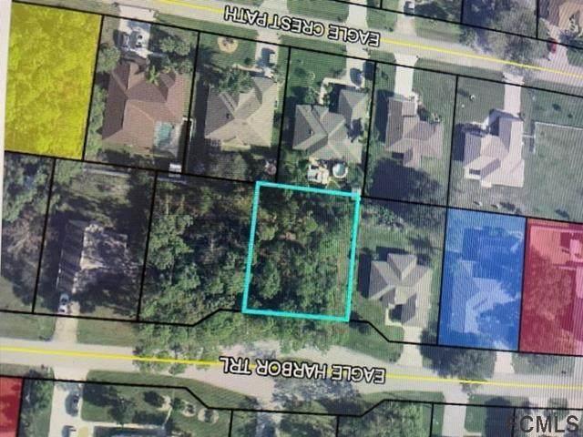74 Eagle Harbor Trail, Palm Coast, FL 32164 (MLS #271376) :: Dalton Wade Real Estate Group