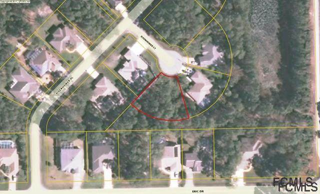 4 Eisenhower Court, Palm Coast, FL 32164 (MLS #271433) :: Endless Summer Realty