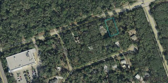24 16th Rd E, Palm Coast, FL 32137 (MLS #232280) :: Memory Hopkins Real Estate