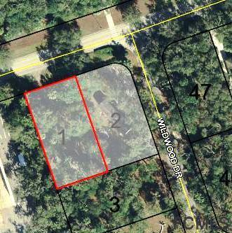 10 16th Rd E, Palm Coast, FL 32137 (MLS #244318) :: RE/MAX Select Professionals