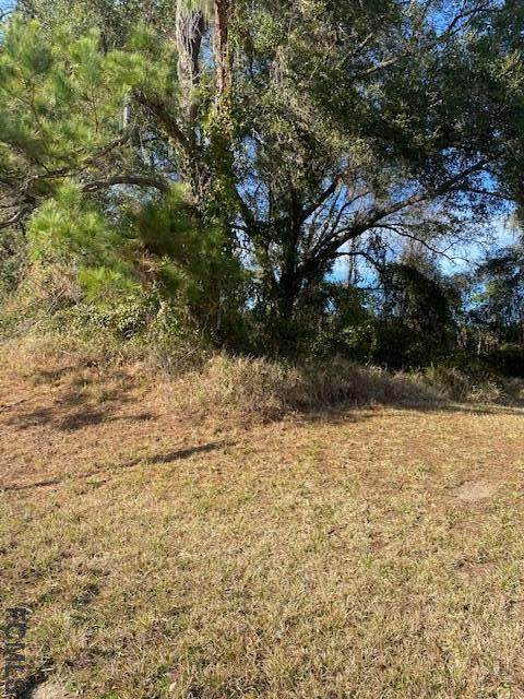 100 Ramsey Rd, Melrose, FL 32666 (MLS #263553) :: RE/MAX Select Professionals