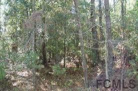 137 Fern Creek Dr - Photo 1