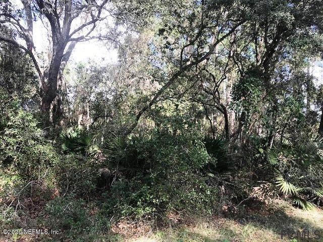 139 Fern Creek Dr, Georgetown, FL 32139 (MLS #264174) :: RE/MAX Select Professionals
