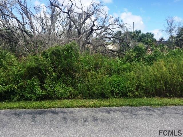 15 Beachside Dr, Palm Coast, FL 32137 (MLS #241311) :: RE/MAX Select Professionals