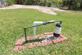 9507 Silver Pine Loop - Photo 34