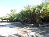 3851 Sand Road - Photo 7