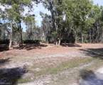 6322 Cedelia Road - Photo 1